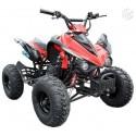Quad 125cc 7 pouces Neuf